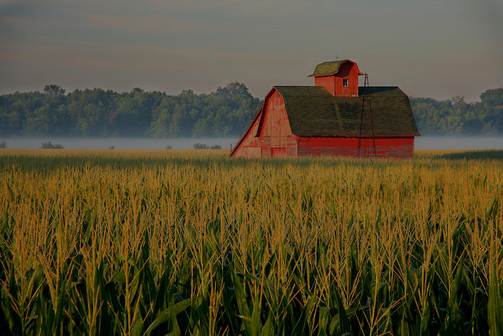 farm and crop insurance in Troy STATE | Insurance Solutions Group